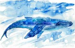 Большие синий кит и вода иллюстрация вектора