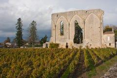 Большие стены St Emilion Стоковая Фотография