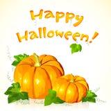 Большие тыквы вектора хеллоуина с знаком Стоковая Фотография