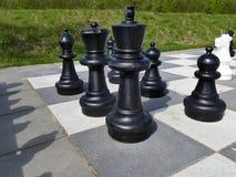 Большие шахматы на земле на поднимающем вверх места для лагеря близкое Стоковое Фото