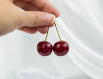 2 больших вишни красного цвета ягод Стоковые Фотографии RF