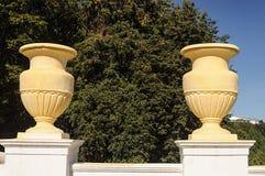 2 больших желтых цветочного горшка Стоковая Фотография RF