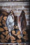 2 больших копченых рыбы висят на предпосылке штабелированного швырка Стоковые Фотографии RF