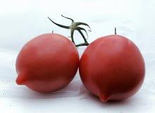 2 больших красных томата на белой предпосылке Стоковые Фото