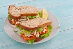 2 больших сандвича с цыпленком Стоковое Фото