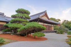 Большое дерево бонзаев с буддийским виском в виске Kinkaku, Японии Стоковая Фотография