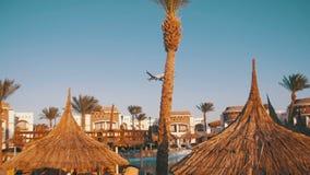 Большое летание пассажирского самолета в небе над гостиницами в Египте сток-видео