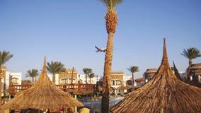 Большое летание пассажирского самолета в небе над гостиницами в Египте видеоматериал