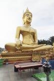 большое золото Будды стоковые изображения rf