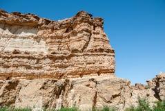 Большое ущелье в пустыне Стоковые Изображения RF