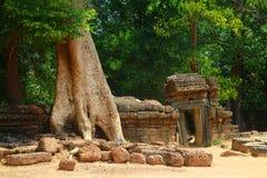 Большое Angkor Wat на заходе солнца Стоковое Изображение