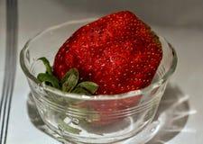Большое Stawbery Стоковая Фотография RF