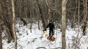 Большой лагерный костер в крупном плане леса зимы акции видеоматериалы