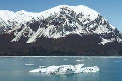 Большой айсберг плавая близкий ледник Hubbard, Аляска Стоковые Фотографии RF