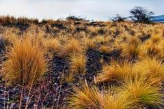 большой ландшафт острова hawaii США стоковые фотографии rf