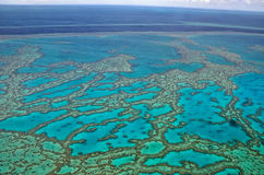 Большой барьерный риф - вид с воздуха Стоковое Фото