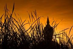 Большой Будда на Wat Mung, Таиланде Стоковая Фотография