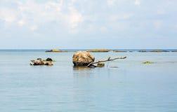 Большой валун в воде Стоковая Фотография