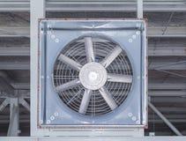 большой вентилятор Стоковая Фотография