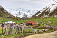 Большой взгляд в Georgia стоковая фотография rf