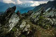 Большой взгляд зеленых холмов накаляя солнечным светом Положение fa Стоковое фото RF