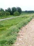 Большой взгляд полей Стоковое Изображение RF