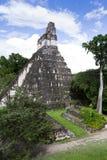 Большой висок ягуара, Tikal, Гватемала Стоковая Фотография RF