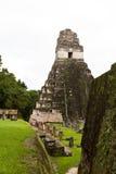 Большой висок ягуара, Tikal, Гватемала Стоковая Фотография