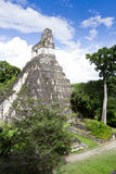 Большой висок ягуара, Tikal, Гватемала Стоковые Фотографии RF