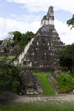Большой висок ягуара, Tikal, Гватемала Стоковые Фото