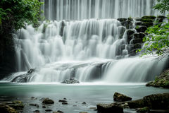 Большой водопад в лесе Стоковая Фотография RF