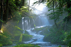 Большой водопад заводи весны стоковая фотография