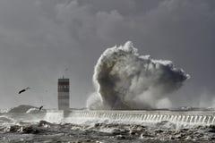 Большой выплеск волны моря Стоковые Изображения