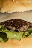 Большой гамбургер Стоковые Фото
