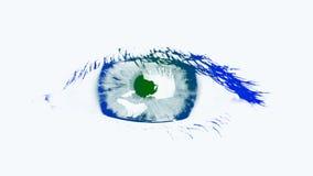 Большой глаз женщины. Подкрашиванная синь и зеленый цвет сток-видео
