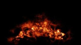 Большой детальный огонь на пламенах огромного масштаба горящих на черной предпосылке видеоматериал