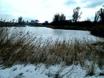 Большой лед в моем городе Стоковое Фото