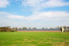 Большой животный амбар в ландшафте Стоковая Фотография RF