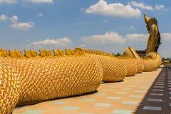 Большой защищать змейки Naga Стоковое фото RF