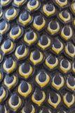 Большой защищать змейки Naga Стоковая Фотография