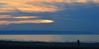 Большой залив и photog Стоковое Изображение RF