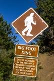 Большой знак скрещивания ноги Стоковые Изображения
