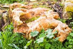 Большой камень в зеленой траве символ доверия и безмятежности Стоковые Изображения RF