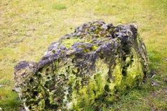 большой камень Стоковая Фотография RF