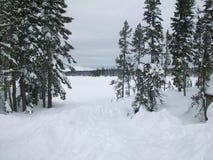 Большой кемпинг озера, Орегон, зима Стоковое Изображение