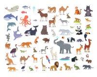 Большой комплект векторов шаржа вида животных мира иллюстрация штока