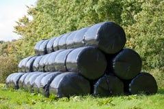 Большой круглой сено обернутое связкой Стоковая Фотография