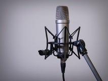 Большой микрофон диафрагмы Стоковая Фотография RF