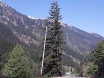 Большой мыс Гималаев стоковое фото rf