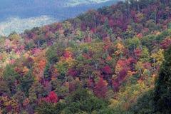 Большой национальный парк закоптелых гор Стоковое фото RF